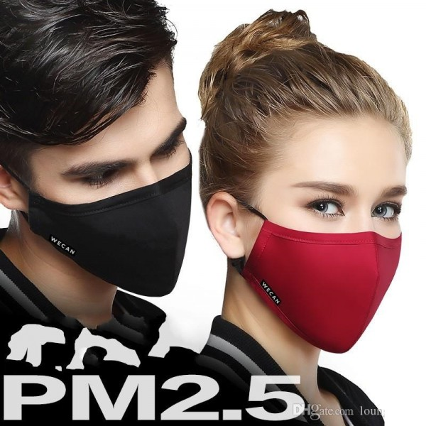 WECAN PM2.5 Protective Facemask with N95 Filter for Adult Men and Women - For Haze Jerebu