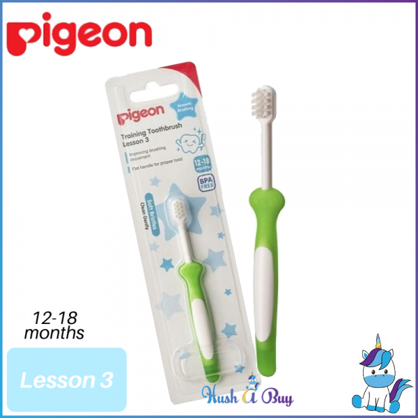 Pigeon Training Toothbrush – Lesson 3 (12-18month)