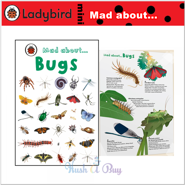 Ladybird Mini: Mad About Bugs