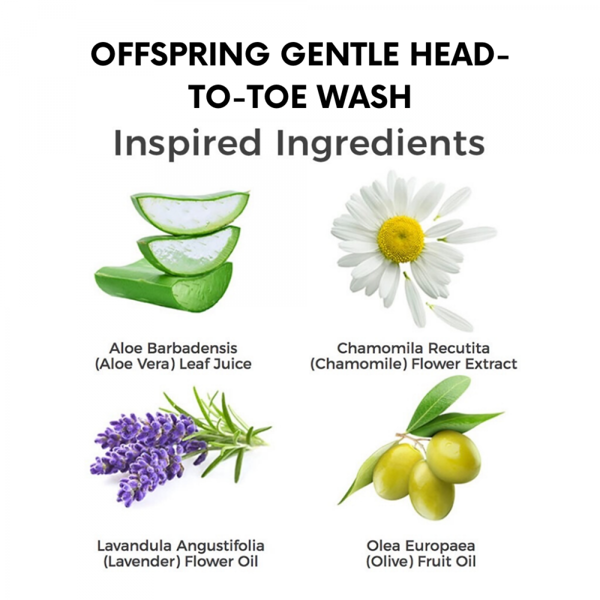 Offspring Gentle Head-to-toe Wash 250ml / 500ml