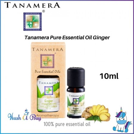 Tanamera Pure Essential Oil 10ml - Ginger