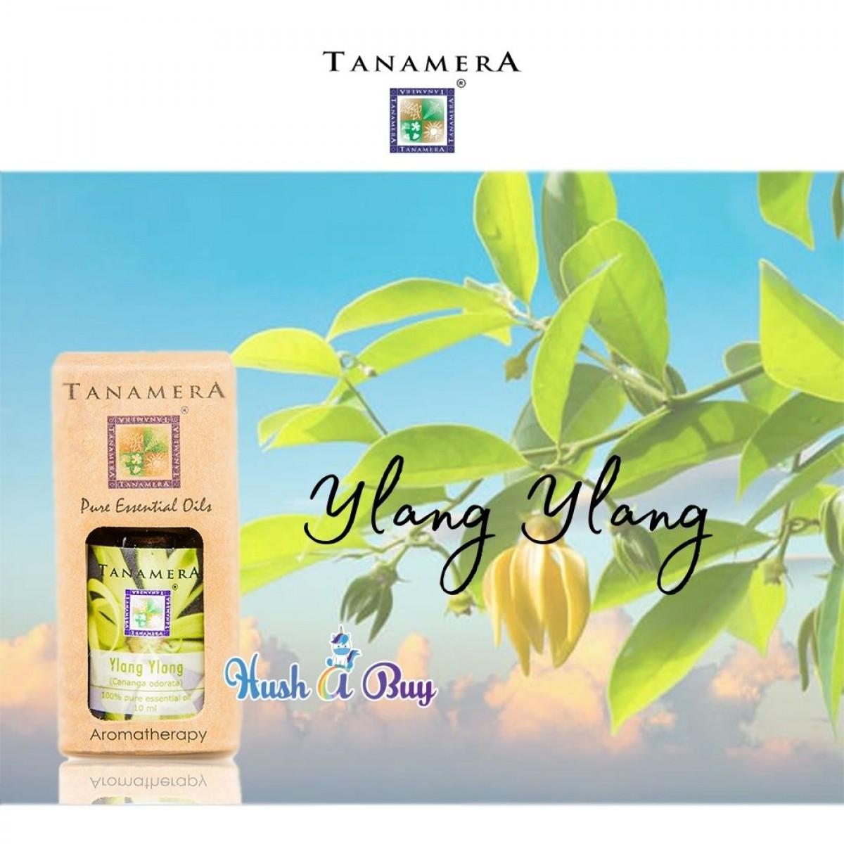 Tanamera Pure Essential Oil 10ml - Ylang Ylang